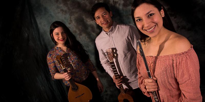 Trio Caribe, groupe de musique Chanteur en représentation à Paris - photo de couverture