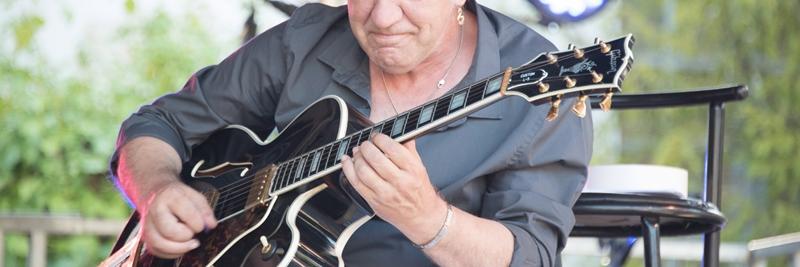 bourdier, groupe de musique Guitariste en représentation à Dordogne - photo de couverture n° 5