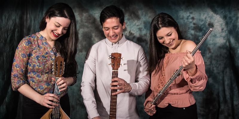 Trio Caribe, groupe de musique Musiques du monde en représentation à Paris - photo de couverture n° 1