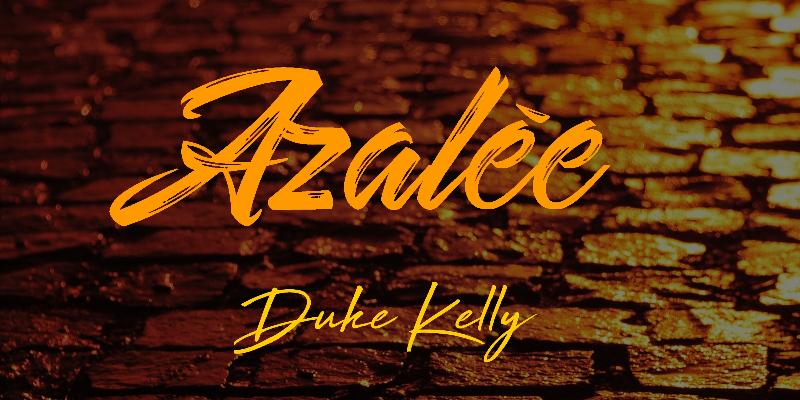 Duke Kelly, musicien Hip-Hop en représentation - photo de couverture