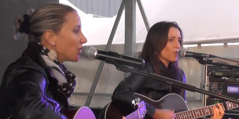 Ladies'Sound, musicien Guitariste en représentation à Loire Atlantique - photo de couverture n° 2