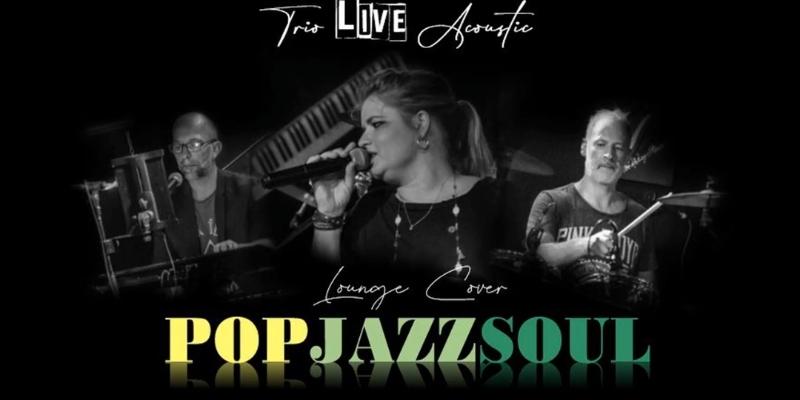 Lounge trio cover, groupe de musique Chanteur en représentation à Var - photo de couverture n° 1
