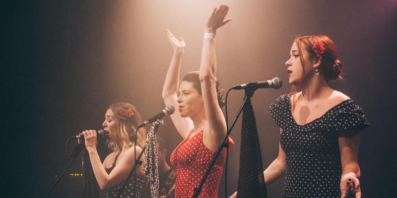 The red lips, groupe de musique Chanteur en représentation à Seine Saint Denis - photo de couverture n° 2