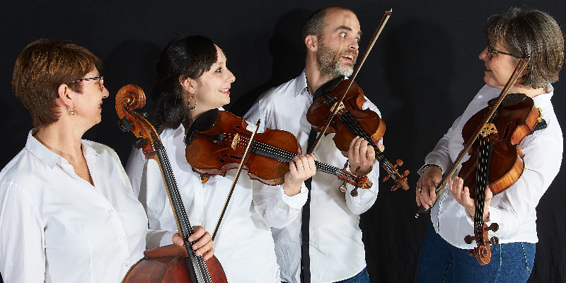 MUSIK EVENT ISA, groupe de musique Classique en représentation à Rhône - photo de couverture n° 1