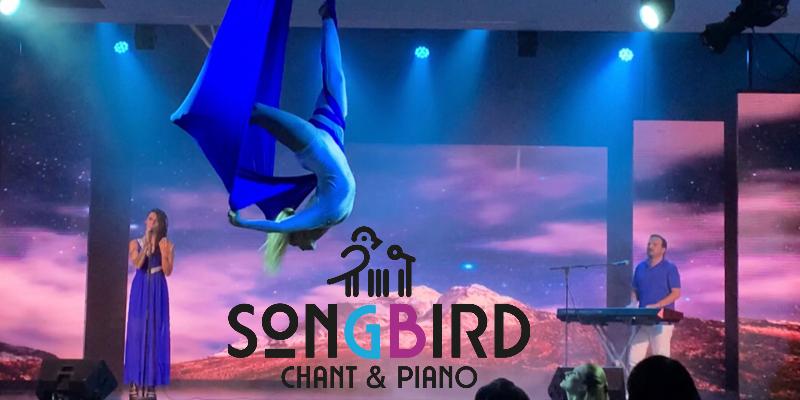SONGBIRD , musicien Chanteur en représentation à Haute Savoie - photo de couverture n° 2