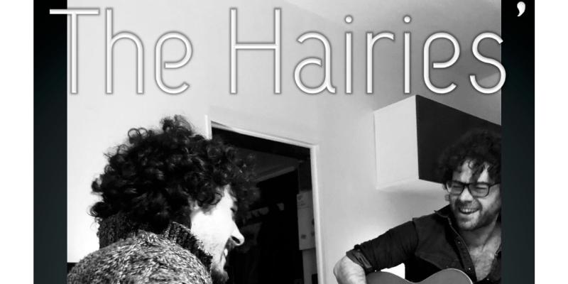 THE HAIRIES', musicien Chanteur en représentation - photo de couverture