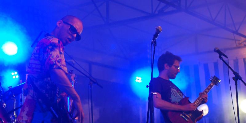 PAMPS! Les Pamplemousses Ethyliques, groupe de musique Garage en représentation à Paris - photo de couverture n° 3