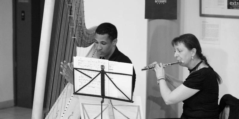 SamHarp, musicien Harpiste en représentation à Haute Garonne - photo de couverture n° 3