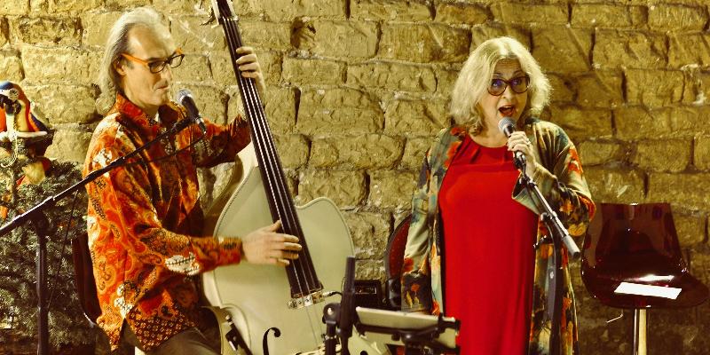 Chic Velvet, musicien Rock en représentation à Hauts de Seine - photo de couverture n° 1