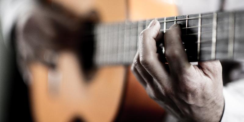 pepegero , musicien Chanteur en représentation à Isère - photo de couverture n° 2