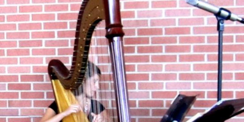 Lauren, musicien Classique en représentation à Paris - photo de couverture n° 3