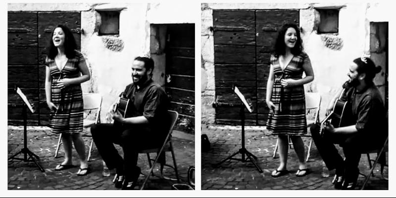 La Princesse et le Croque-Notes, musicien Chanteur en représentation - photo de couverture n° 2