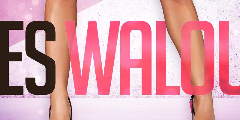 Les Walouz, groupe de musique Pop en représentation - photo de couverture