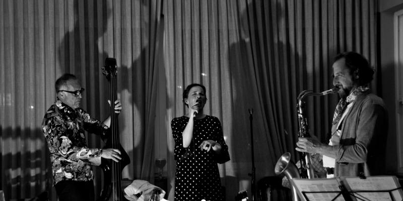 Mercedes y los viajeros, groupe de musique Chanteur en représentation - photo de couverture n° 2