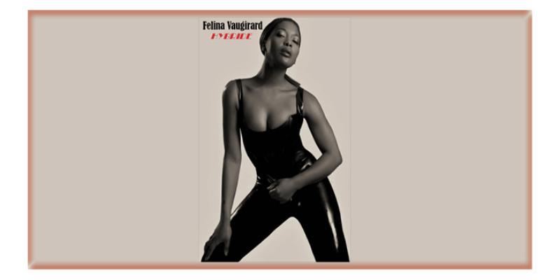 Felina Vaugirard, musicien Pop en représentation - photo de couverture