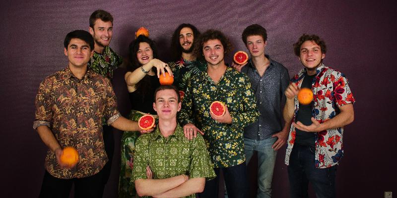NOOTKATONE, groupe de musique Soul en représentation à Val de Marne - photo de couverture n° 1