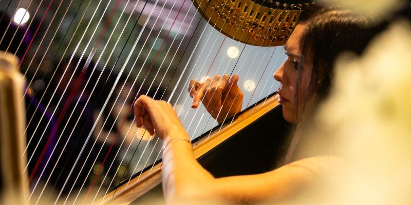 Dora, musicien Acoustique en représentation à Val de Marne - photo de couverture n° 1